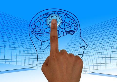 La perfección de la mente
